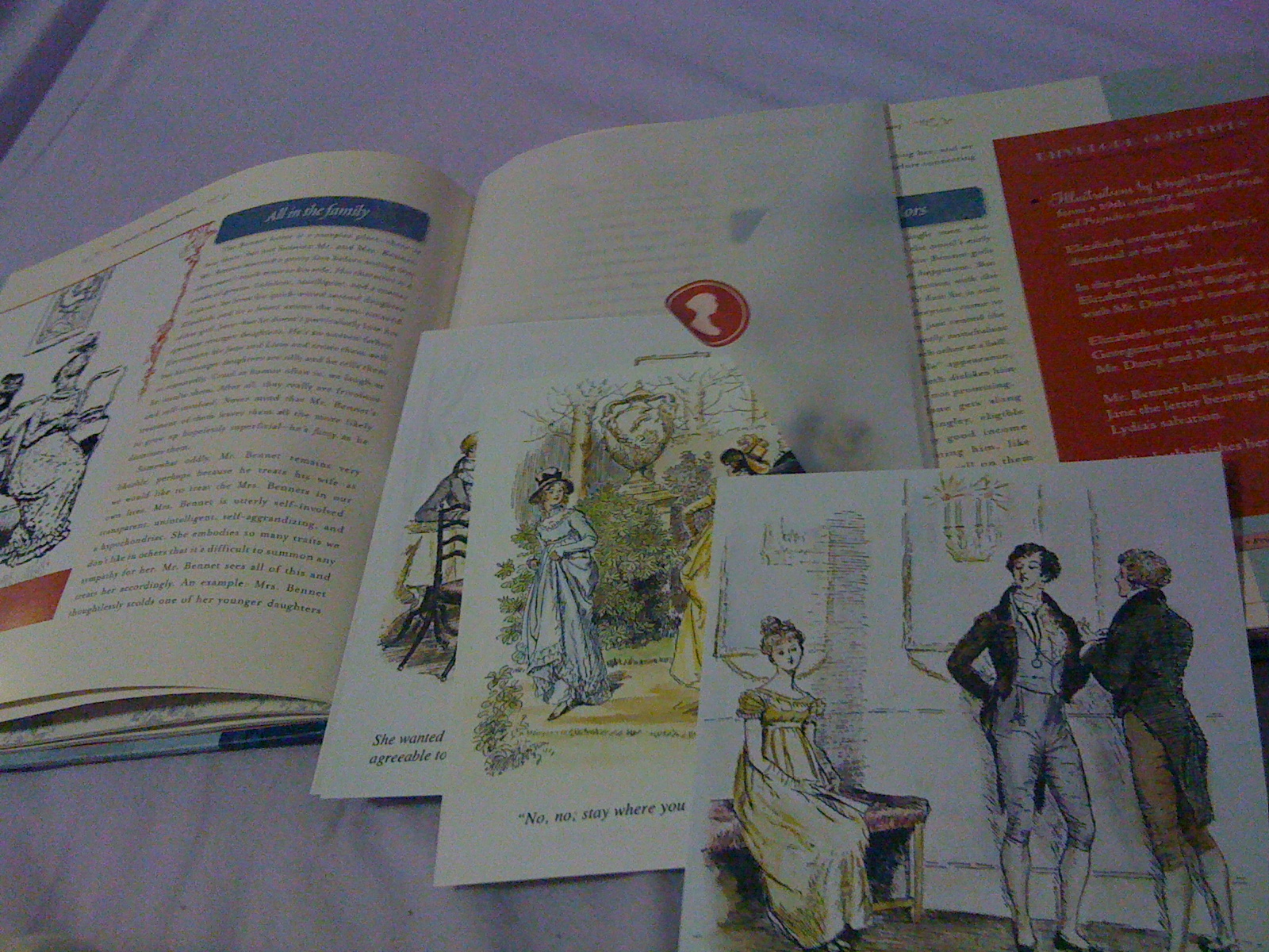 Jane Austen An Illustrated Treasury Review